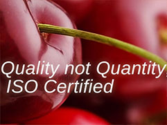 Quality over Quantity : Why We Choose ISO 9001:2015 Certification
