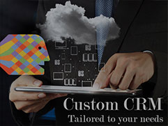 Here's why Custom CRM is best for you