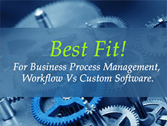 Business Process Management : Workflow Products vs Customised Software Solutions